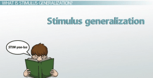 How the Stimulus Generalization Process Is Conditioned