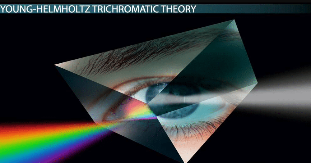 Young-Helmholtz's Trichromatic Theory of Color Vision