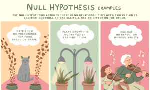 What is a Null Hypothesis? – Definition & Examples